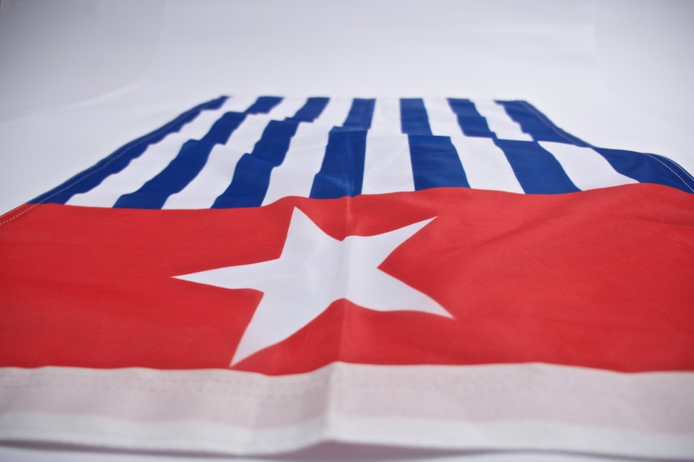 Flag main